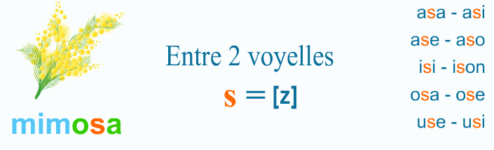 Lecture, s = [z]