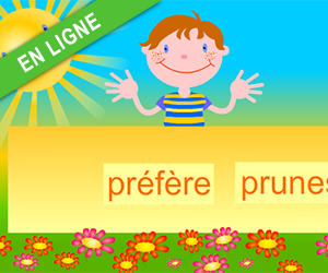Exercices interactifs, reconstituer les phrases